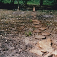Stepping Stones 1988