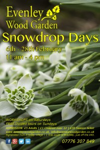 Poster_SnowdropDays