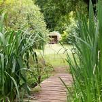 Evenley Wood Garden, summer 2015