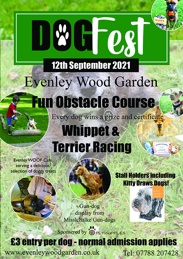 Dog Fest poster